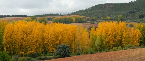La Mierla - La Chopera en otoño