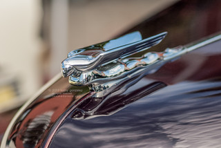 1948 nash hood ornament