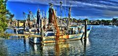 Yamba Trawlers getting ready