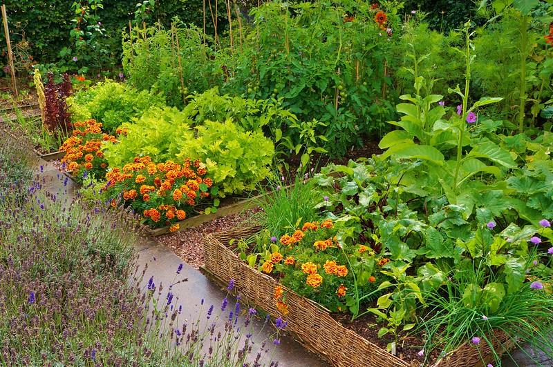 Let\'s Make a Potager Garden - 10 Edible Landscaping Designs for ...