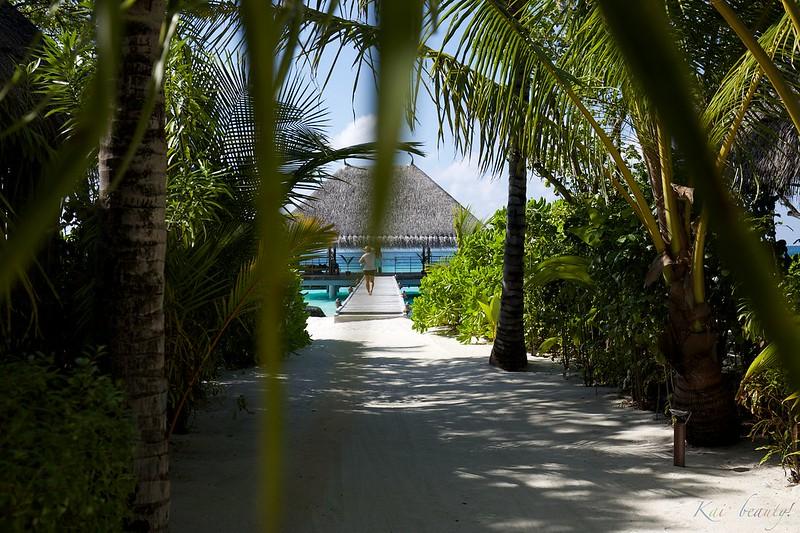 Maldives 094