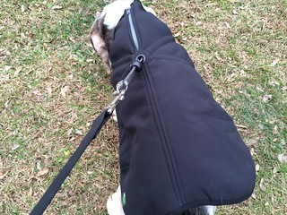 1Z Coat product review