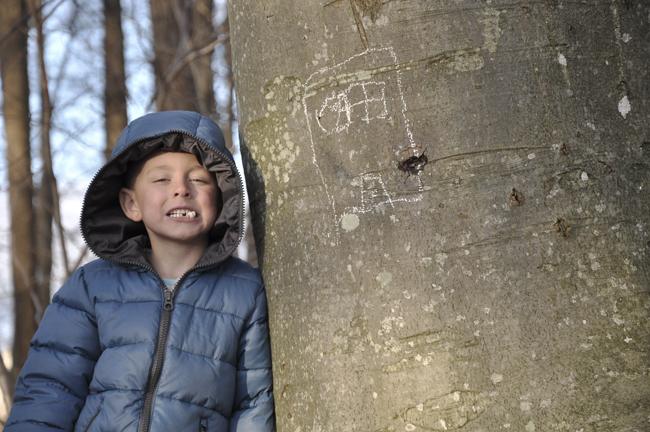 ritat på bokträdet