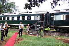 Royal Livingstone Express