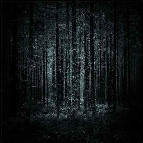 trees bw forest photoshop suomi finland dark square woods nikon kuopio 2014 ok6 d700 ollik joutenjärvi 20140206 work3680