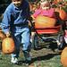 Kenosha_Pumpkin Kids