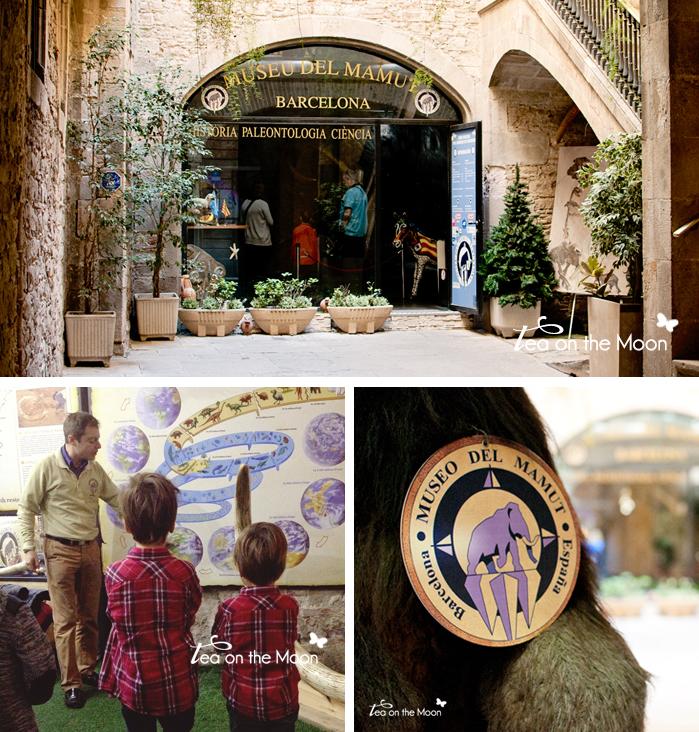museo del mamut barcelona