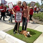 400 nurses protest conditions, safety at Arrowhead Regional Medical Center in Colton