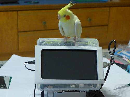 收納盒改裝為樹莓派行動電腦
