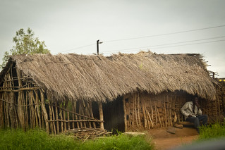 Thatched Roof Stick Home