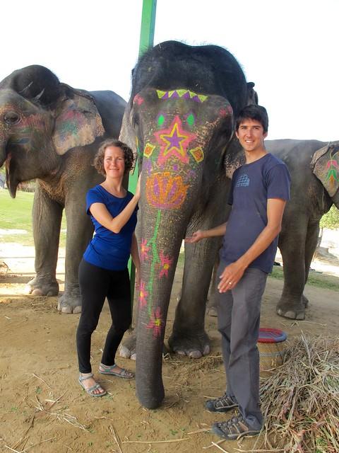 India - Jaipur - Elefantastic