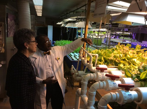 USDA Under Secretary Cathie Woteki reviews the hydroponic garden at Food and Finance High School in New York City, which is fed nutrients from sediment collected in Dr. Warner's basement fish tanks and pumped up four floors to the garden.
