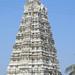 1291 Ekambareswara Temple - Kanchipuram India - 04-05-2016