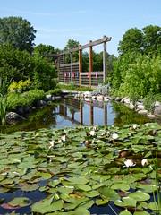 Cantigny Park 2016