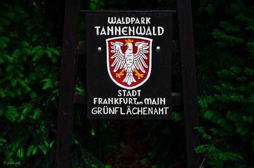 Tannenwald Eingang
