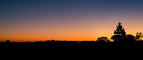 light sky tree silhouette evening time australia queensland unidentified lamingtonnationalpark 365photoproject