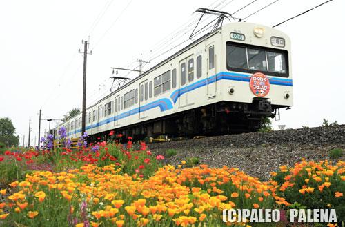 わくわく鉄道フェスタ号☆1010F(永田-小前田)