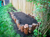 Raised bed by stumps
