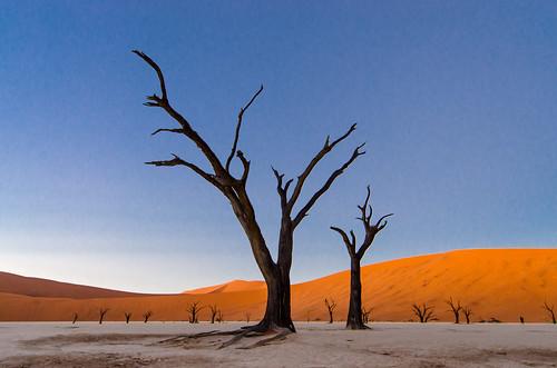 landscape namibia sossusvlei deadvlei namibie mygearandme mygearandmepremium mygearandmebronze vigilantphotographersunite