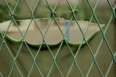 line(0.0), circle(0.0), pattern(1.0), wire fencing(1.0), chain-link fencing(1.0), fence(1.0), metal(1.0), mesh(1.0), green(1.0), net(1.0),