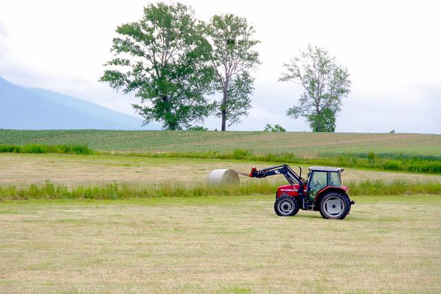 牧草ロールのある風景4