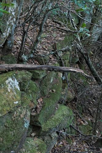 Bong Bong Road old rock wall 130622-8957