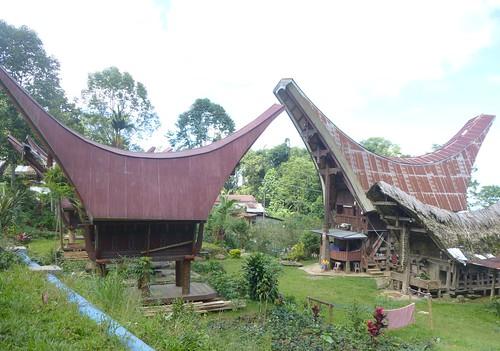 Sulawesi13-Lo'ko Mata-Ke'pa (61)