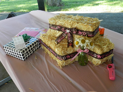 Darcy's 3rd Cowgirl Birthday Party