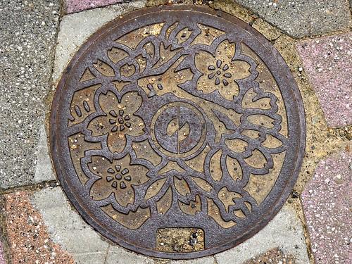 Imadate Fukui , manhole cover 3 (福井県今立町のマンホール3)