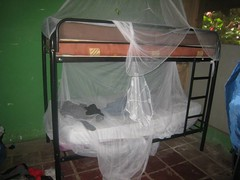 outdoor structure(0.0), canopy(0.0), tent(0.0), mosquito net(1.0),