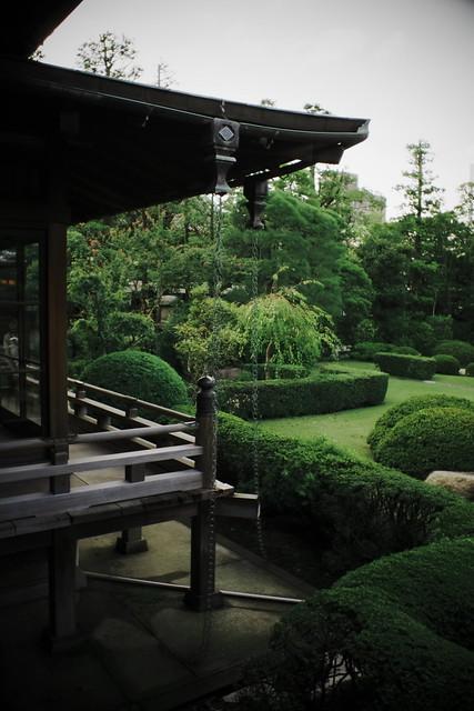Cap Nostalgia - Garden