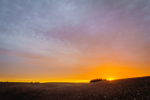 trees sky orange sun yellow clouds sunrise day purple cloudy sweden fields skånecounty