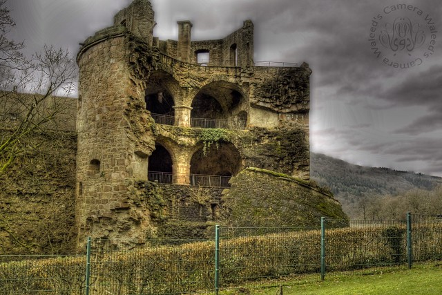 Ruins of the Heidelberg Castle