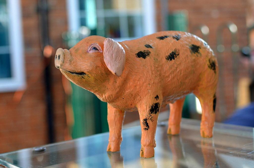 Coopers Pork mascot