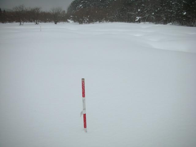 2mポールの上部60cmだけが見えた.積雪は120cmくらいだろうか.
