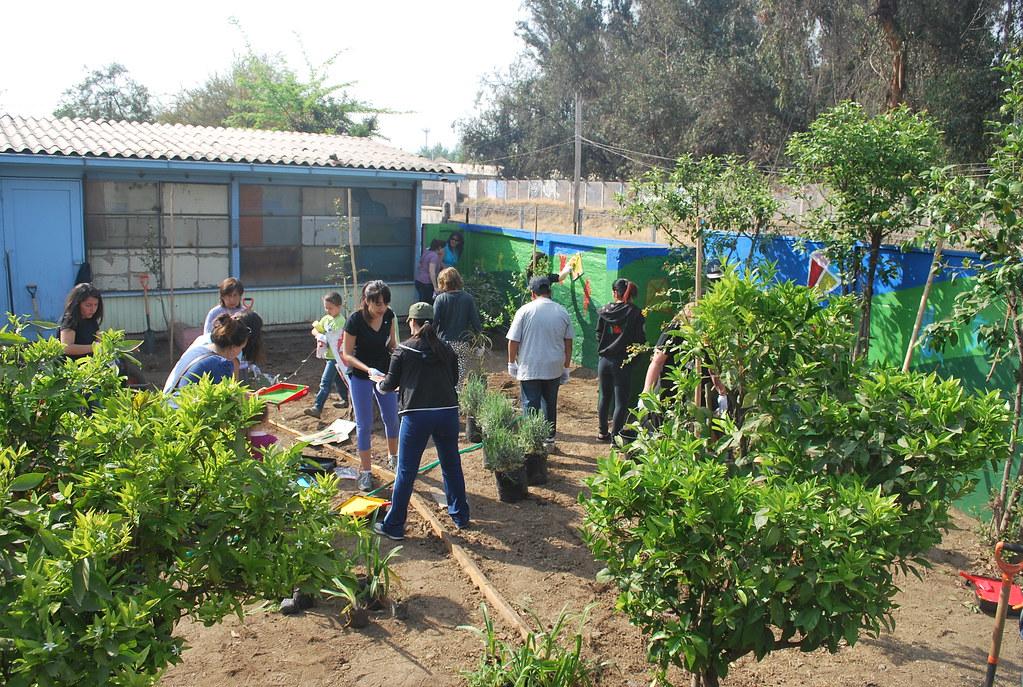 Jard n infantil estrella andina huechuraba fundaci n for Jardin infantil serrano 78