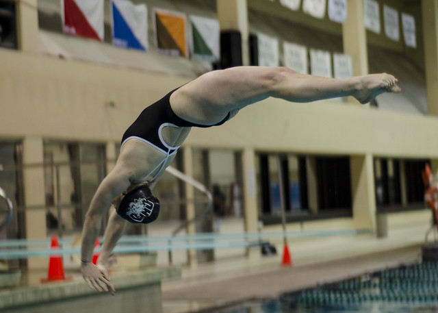 Ohio University Swimming & Diving