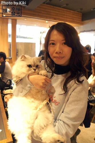 cat_5th (32)