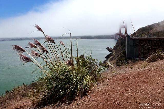 San Francisco Bay from Sausalito Vista Point - California