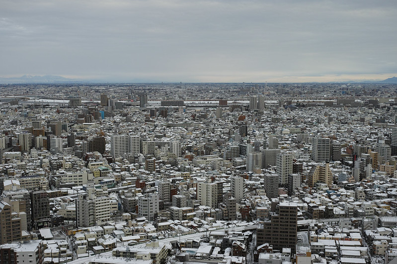 Tokyo in snow