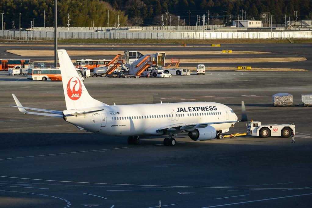 JAL 737-800 JA311J