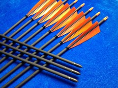 carbon arrows cheap (2)