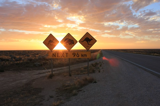 Road signs on the Nullarbor