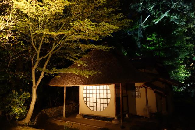 京都春の夜間拝観