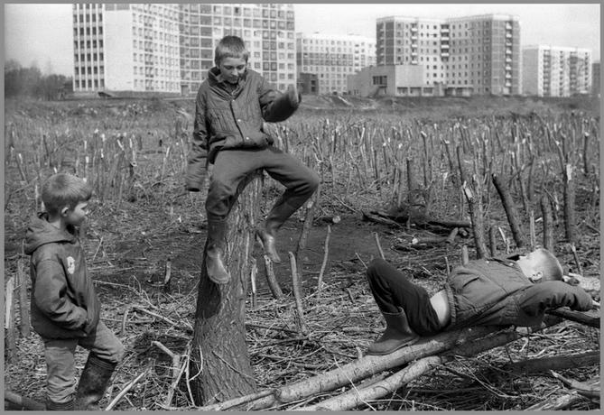弗拉基米尔·索科拉耶夫摄影选19