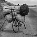 Peter Gostelow posted a photo:Charcoal is probably the most common source of fuel for cooking in Tanzania. Sacks such as these are transported from rural to urban areas, very frequently on the backs of bicycles.