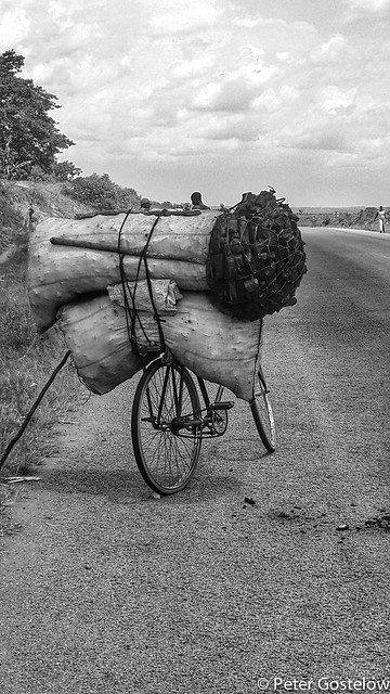 Charcoal transport
