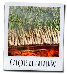 Calçots, een culinaire specialiteit van Catalonië