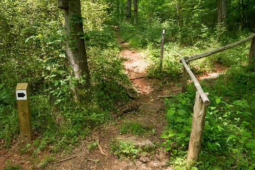 Glendale Shoals Trail - 05