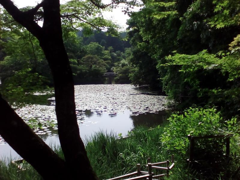 Kyoto, Ryoan-ji Temple